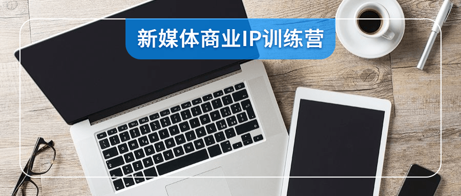 新媒体商业IP训练营视频